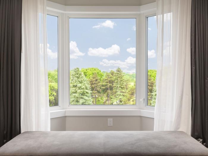 Window with a forest view